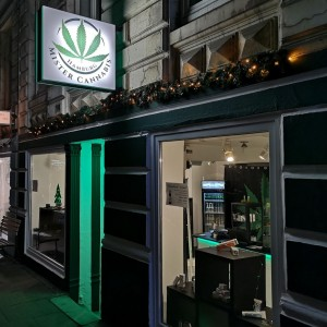 Mister Cannabis Store